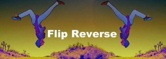 Flip-Reverse